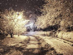 Let it snow by AutumnIulia