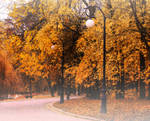 A foggy morning by AutumnIulia