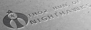 Thor Nighthawks Banner by ThorTyrker