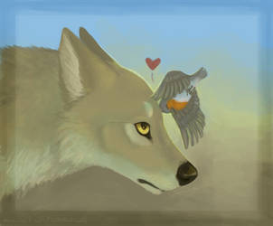 Robin and coyote by Botteled-Wolf