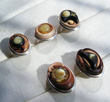 Carved Rings amber wood silver by AmberSculpture