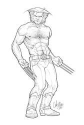 Wolverine by x-catman