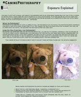 Exposure Exlanation by SleepingDeadGirl