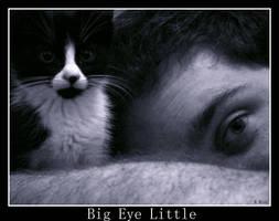 Big Eye Little by Kaitrosebd