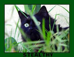 Stealthy by Kaitrosebd