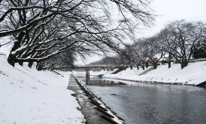 Snow today by caiotami