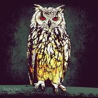 owl by Juliansyahjude