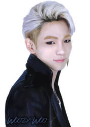 SHINee's Kim Kibum, plus Speedpainting by Woozy-Woo