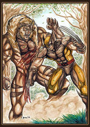 Wolverine vs Sabertooth Colored by benbal
