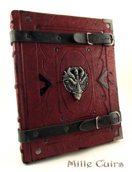 Dragon Sketchbook by MilleCuirs