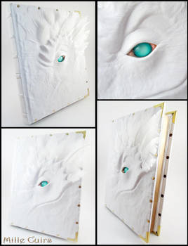 White feathers and leather book by MilleCuirs