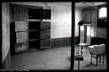 Ellis Island Hospital V by rjcarroll