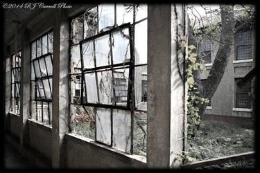 Ellis Island Hospital VI by rjcarroll