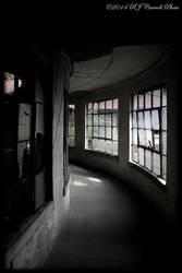 Ellis Island Hospital XII by rjcarroll