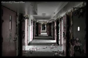 Hyman Pleasure Psych XXXV by rjcarroll