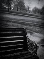 A Bench, A Story by jmpotter