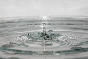 Splash!1 by dybicki