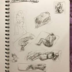 Anatomy by DustiiBunnii