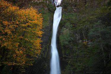 Horsetail Falls - Oregon by pyro303