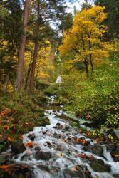Wahkeena Falls - Oregon by pyro303