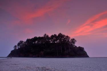 Proposal Rock - Neskowin Beach, Oregon. by pyro303