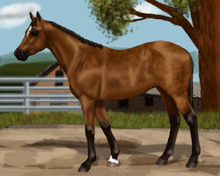 Queenie as a yearling by tarot020