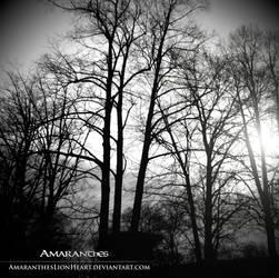 Darkness by AmaranthesLionHeart