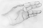 Hand by Sleeman