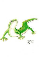 Gecko by ArtSpillGalaxy