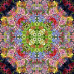 Flower Waltzes Side 3 by RebeccaTripp