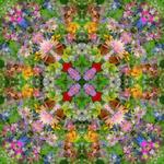 Flower Waltzes (Side 4) Cover by RebeccaTripp