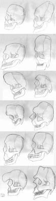Skulls by fj-garcia