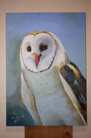 Barn Owl (Oil Painting) 2017 by 92CaptainWolf