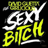 David Guetta - Sexy Bitch by fabianopcampos