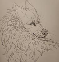 Fluffy boi by AlexChase168