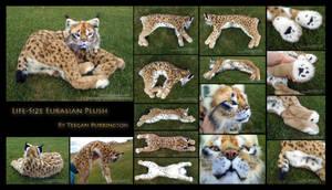 Life-Size Eurasian Lynx Plush Detail by TeeganPurrington