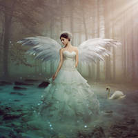 Angel by TheClassica