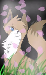 My Warrior cat Oc Honeypelt by PikachuGirl234