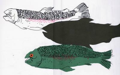 raw fish by wolfship