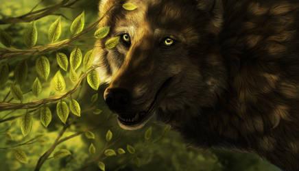 Wolf Portrait 2014 by Koahara
