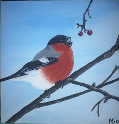 Bullfinch by Mipeo