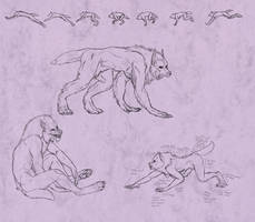Amber Peace Werewolf Doodles by TeknicolorTiger