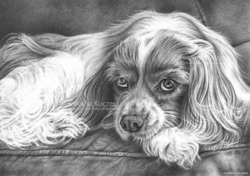 Lazy afternoon - graphite drawing by Kot-Filemon