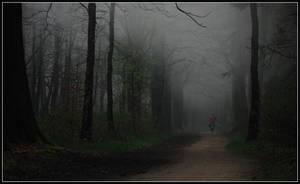 Who dares to follow ... ? by Esperimenti