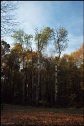 131019-Briar-Creek-Lake-Park-03 by DwayneF