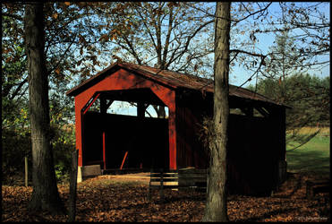 131019-Briar-Creek-Lake-Park-04 by DwayneF