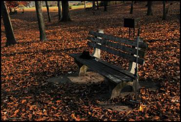 131019-Briar-Creek-Lake-Park-05 by DwayneF