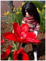 RT -- Red Flower by RasTear