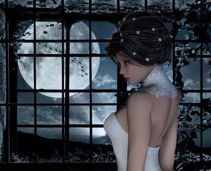 Moon Window by Poser4U