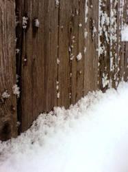 Winter fence by Joannyta